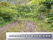 Finca en venta - Pedernales Manabí Ecuador